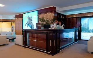Pulkovo Lounge. Saint-Petersburg. 2009